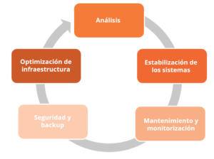 fases programadas del servicio proactivo de Lunia