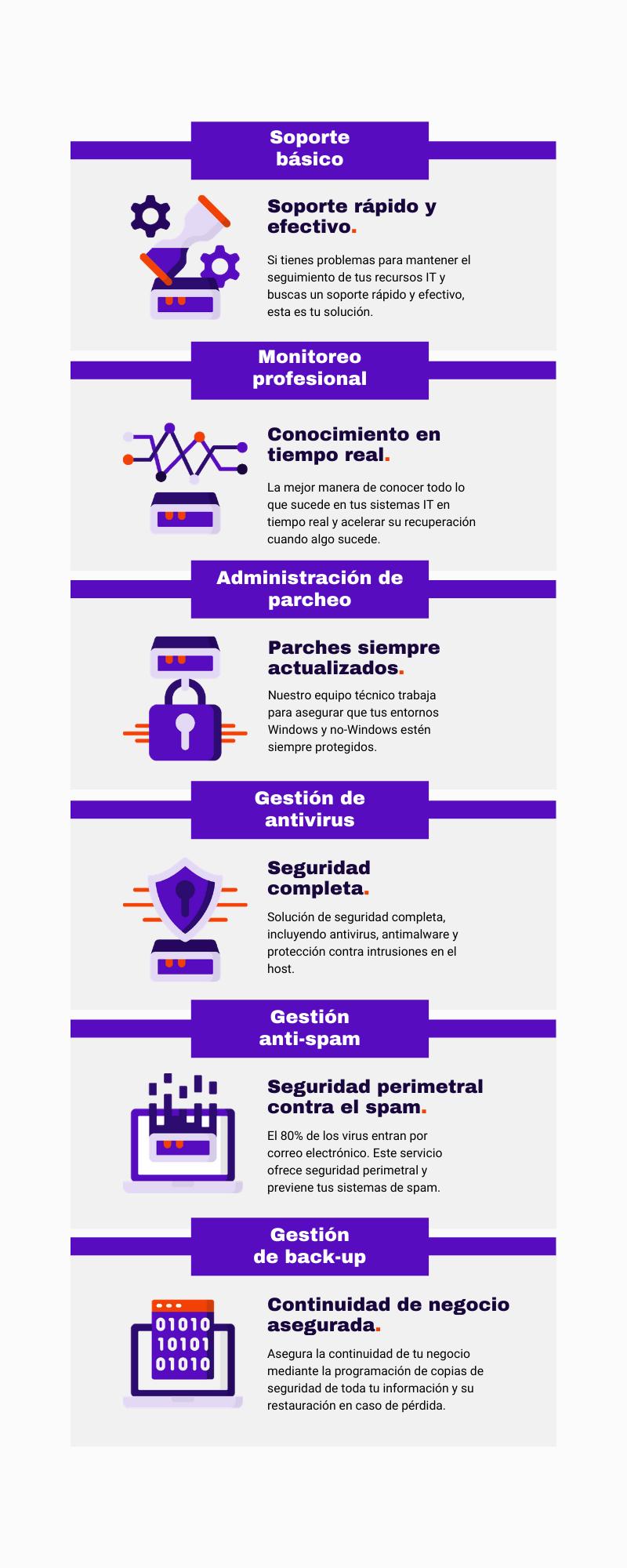 infografía resumen de todos los servicios informáticos