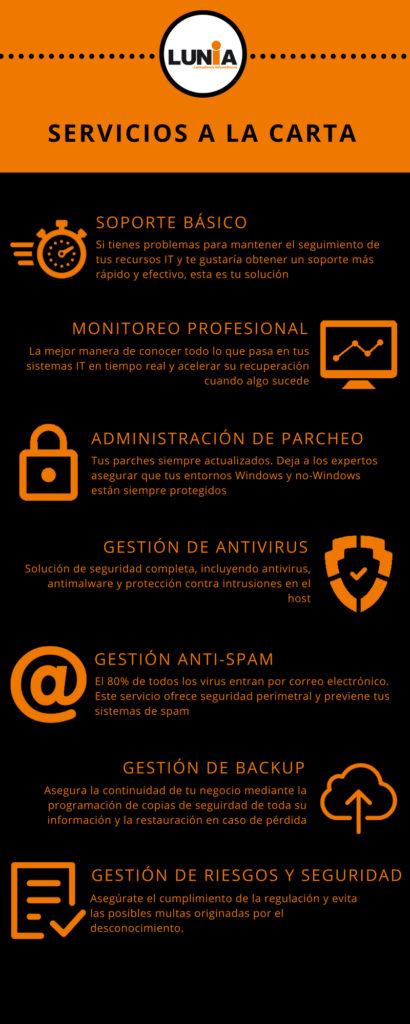 infografía con servicios IT incluidos en el programa A La Carta